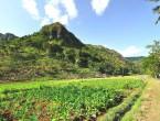 Objek Wisata Bantul Jogja