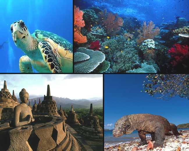 Daftar Tempat Wisata Indonesia Terbaik yang Wajib Dikunjungi Tahun ...