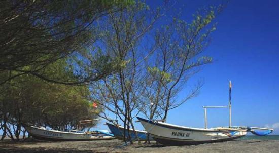 Wisata Pantai Baru Bantul