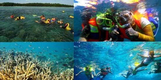 Kegiatan Di Pulau Pari Kepulauan Seribu