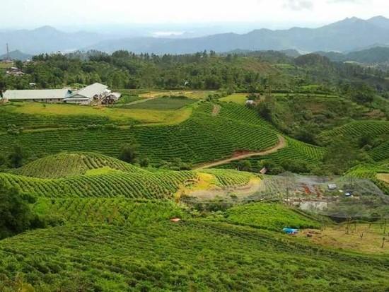 Kawasan Wisata Malino Highland Makassar