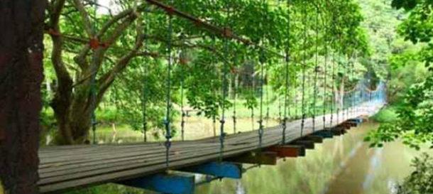 Taman Hutan Wisata Punti Kayu Palembang