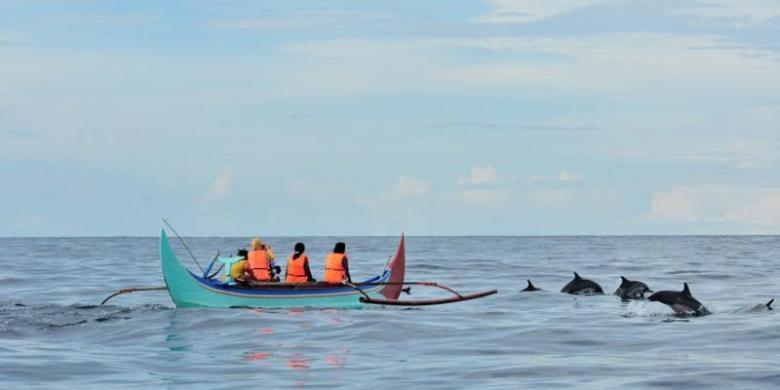 Tempat Liburan Lebaran Teluk Kiluan Lampung Lumba-Lumba