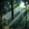 Wisata Hutan Wanagama Gunung Kidul Jogja