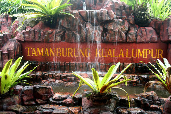 Kuala Lumpur Bird Park Tempat Wisata Di Malaysia